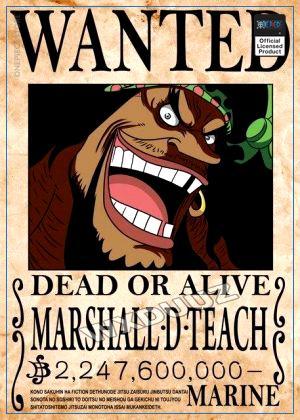 One Piece Wanted Poster  Marshall D. Teach OP1505 21cm X 30cm Official One Piece Merch
